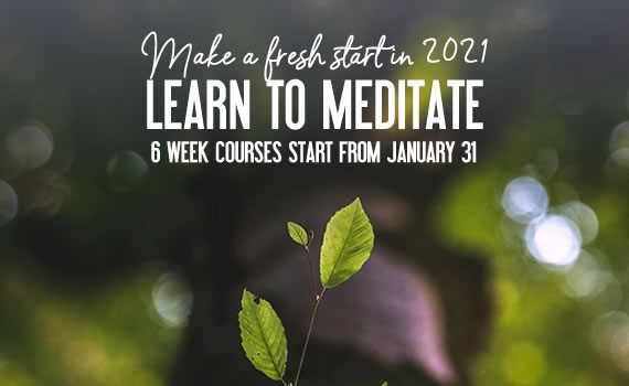 Meditation & Mindfulness for Beginners Courses