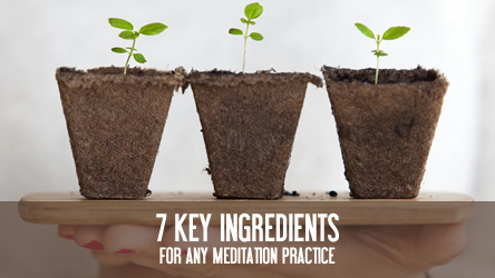 7 Key Ingredients for any Meditation Practice